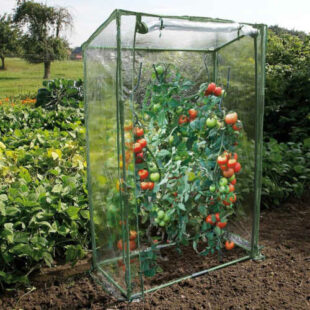 Špeciálna fólia na paradajky